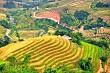 Du Lịch Hà Giang: Mùa Thu Ngắm Lá Vàng Trên Đỉnh Hoàng Su Phì