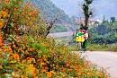 Những Mùa Hoa Tháng 10 Hà Giang