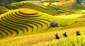 Tour Du Lịch Hà Giang - Đồng Văn - Lũng Cú 3N2D Dịp Tết Dương Lịch 2017