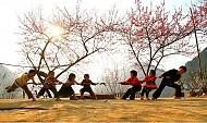 Lên Hà Giang Những Ngày Xuân Tháng 2 – Mùa Hoa Đào Hoa Mận Nở