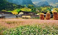 Du lịch thung lũng Sủng Là Hà Giang