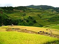 Hà Giang: Doanh Thu Du Lịch Quý I Năm 2014 Đạt Hơn 100 Tỷ Đồng