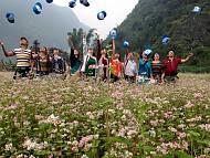 Hà Giang Lo Ngại Quá Tải Ở Lễ Hội Hoa Tam Giác Mạch, Huy Động Thêm Nhà Bạt
