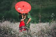 Hà Giang Tháng 10 - Thời Điểm Cho Hành Trình Trải Nghiệm