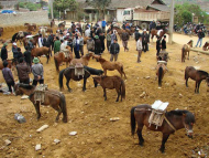 Phiên chợ ngựa ở vùng Tây Bắc