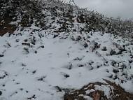 Tuyết Rơi Phủ Trắng Mèo Vạc - Hà Giang