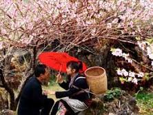 Tour Du Lịch Hà Giang 5 Ngày 4 Đêm: Hà Nội  - Hà Giang – Chợ Tình Khâu Vai