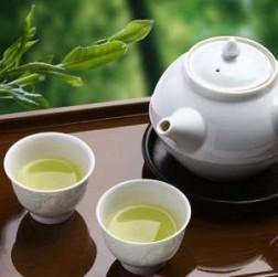 Chè San Tuyết Hà Giang