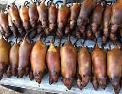 Đặc Sản Thịt Chuột La Chí Hà Giang