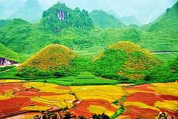 Tour Du Lịch Hà Giang Du Xuân 2015: Quản Bạ - Yên Minh - Đồng Văn