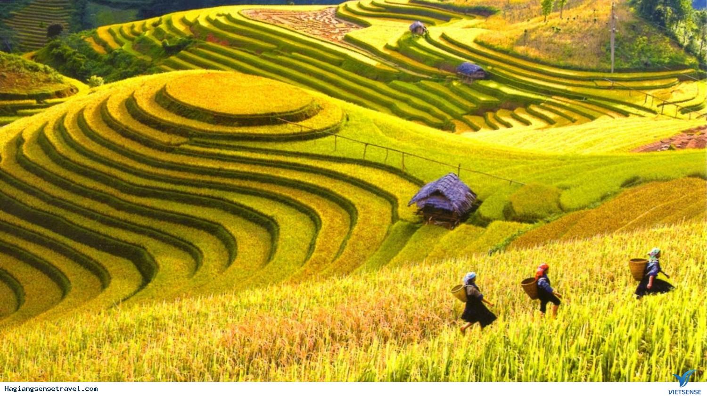 Du lịch Hà Giang chiêm ngưỡng vẻ đẹp Ruộng bậc thang