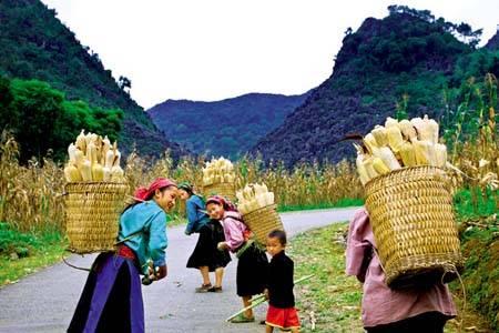 Hà Nội- Hà Giang Đồng Văn – Mã Pì Lèng – Mèo Vạc – Hoàng Su Phì – Xín Mần